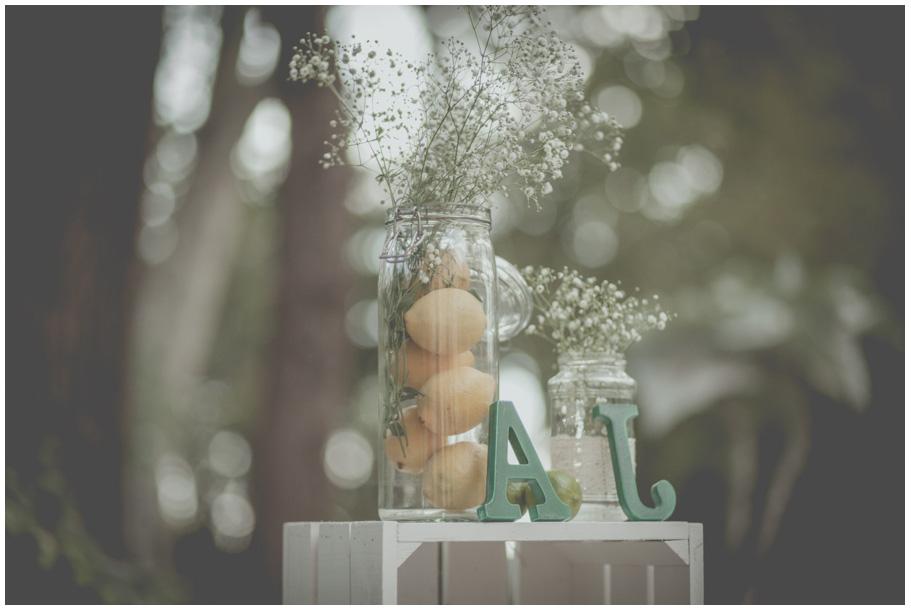 Fotos-de-boda-en-hacienda-el-alamo-málaga-048