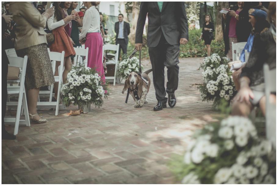 Fotos-de-boda-en-hacienda-el-alamo-málaga-056